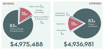 pie-charts of 2016 Revenue and expense breakdown percentages