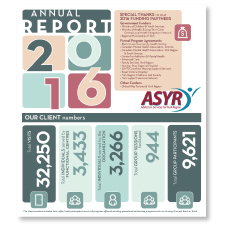 front cover of the 2016 Annual Report