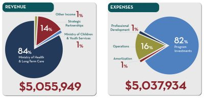pie-charts of 2017 Revenue and expense breakdown percentages
