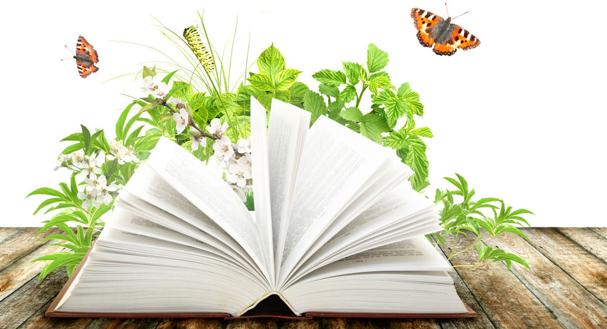 hardcover book with fluttering pages near plants and butterflies on a picnic table