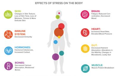 diagram of human body with locations of stress identified
