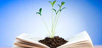 new seedling in fresh soil on top of an open hardcover book of knowledge
