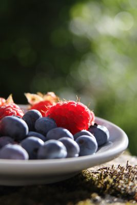 ceramic bowl filled with fresh blueberries and raspberries on a picnic table.